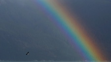 'Record breaking' rainbow sparks online search for pictures (VIDEO)